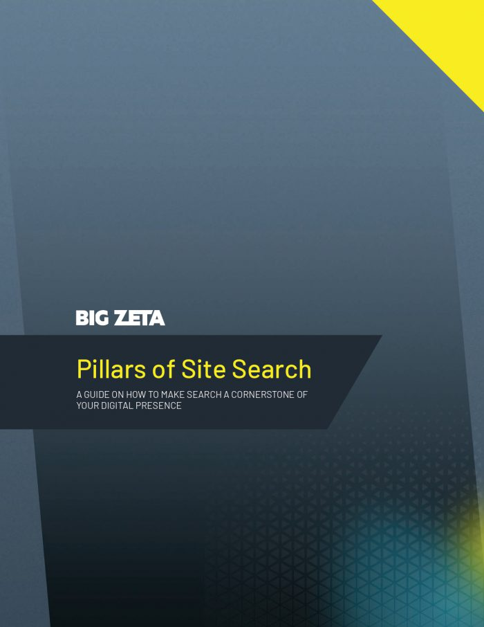 Pillars of Site Search article